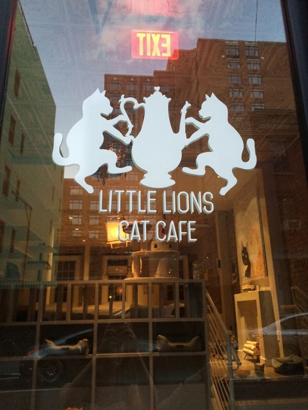 Short List of Dog & Cat Cafe In New York You Must Visit