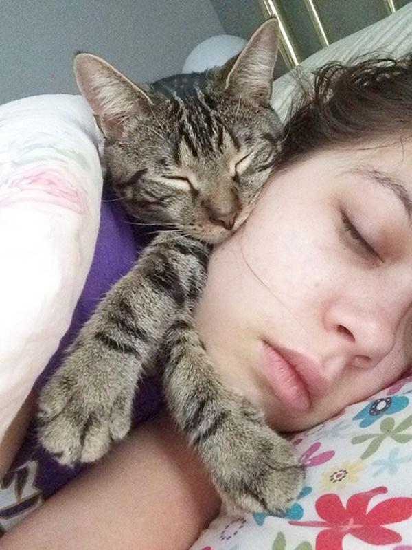 Reasons Why My Cat Love To Sleep On Me