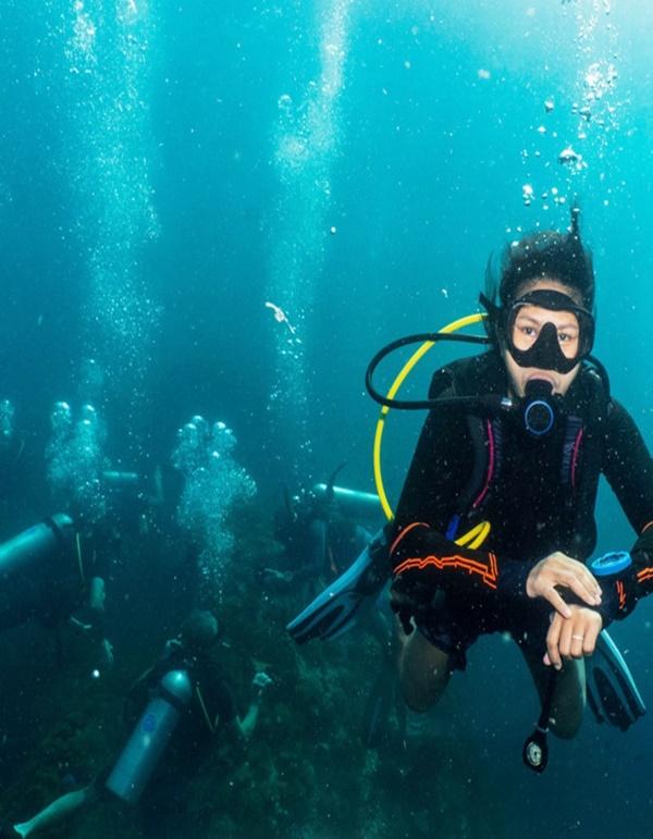 Jellyfish Sting Symptoms and Treatment