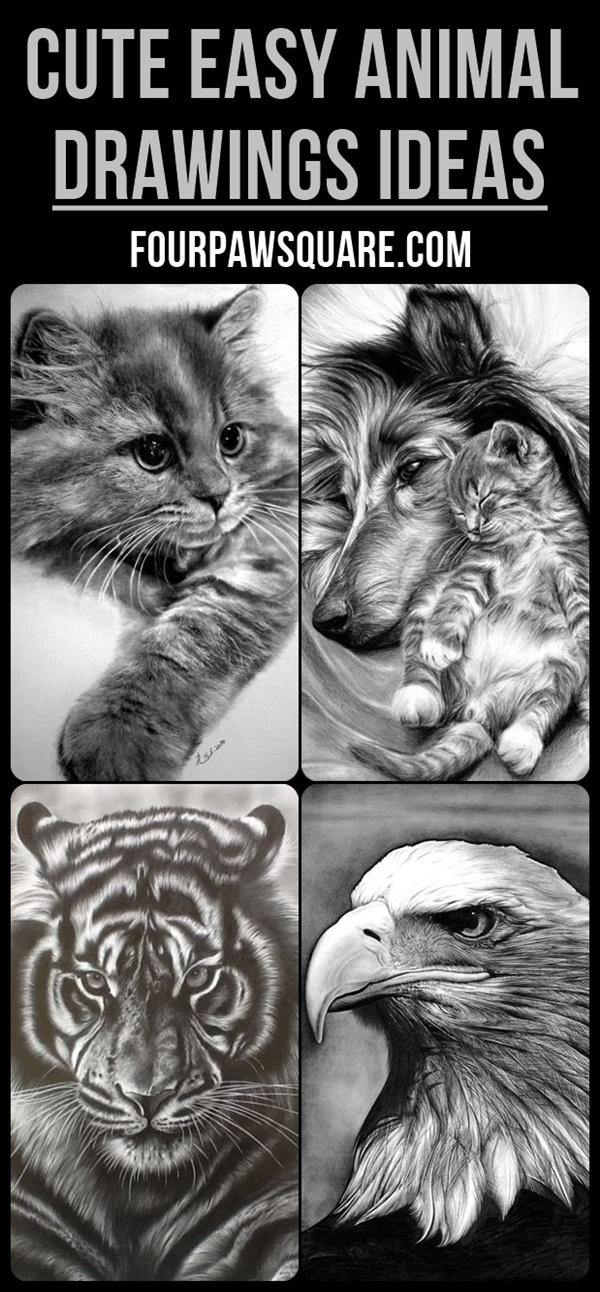Cute Easy Animal Drawings ideas