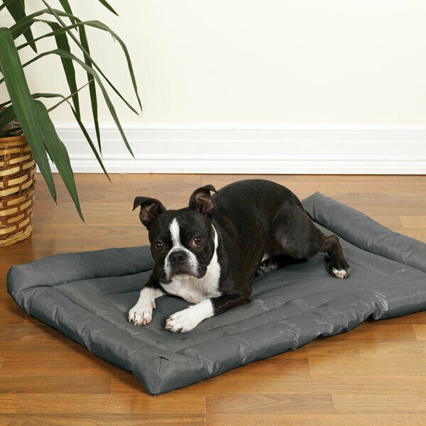 Chew Proof Bed Ideas for Dogs