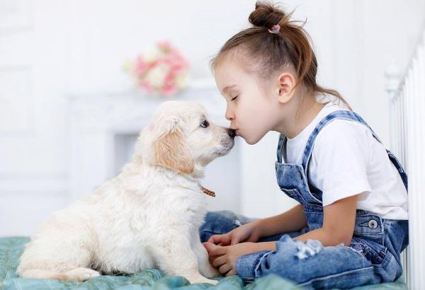 Friendly Dog Breeds for kids